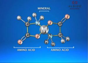 מולקולת מגנזיום גליצינאט