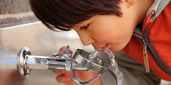 חשיבות שתיית מים